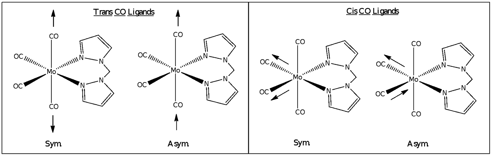 substitution reactions of molybdenum hexacarbonyl and