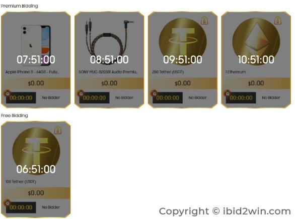 Hướng dẫn bidding đấu giá kiếm tiền trên iBid