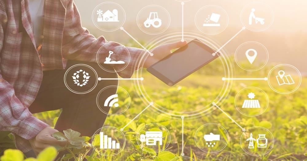 Áp dụng khoa học công nghệ vào nông nghiệp để cho năng suất cao hơn