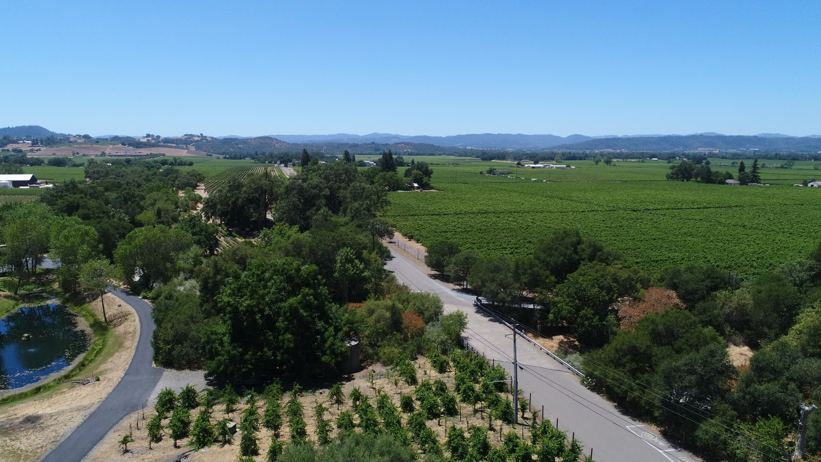 Bike ride up Pine Flat Road - aerial drone photo of start and vineyards