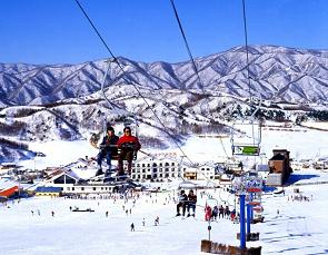 Ski Resort - South Korea Tour