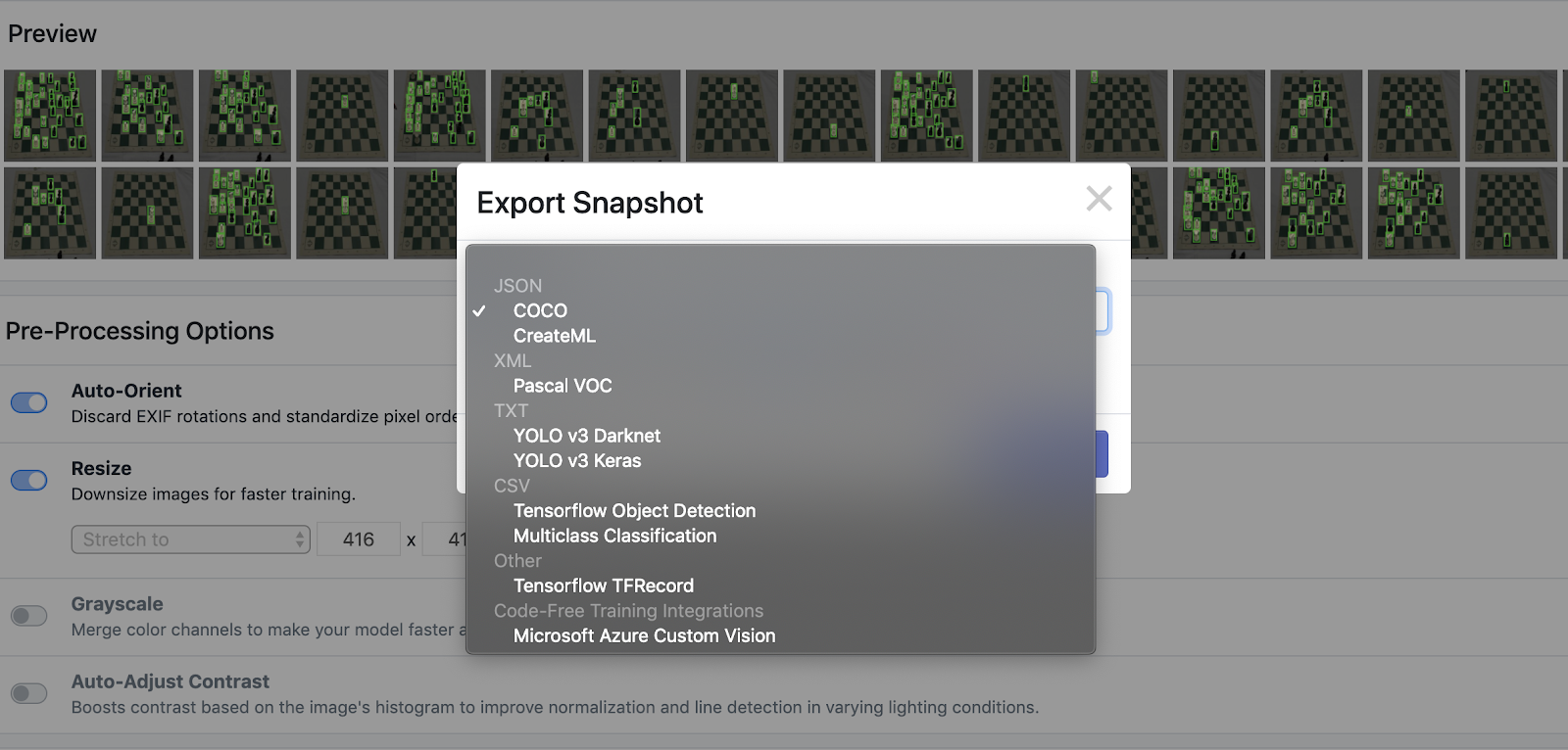 Roboflow Screenshot: Export Snapshot (COCO JSON)