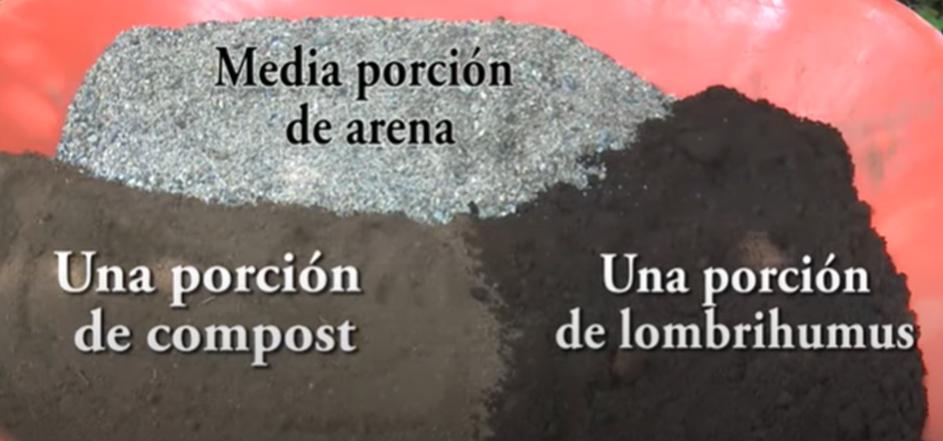 #ReproducciónDeMicorrizasEnTuFinca