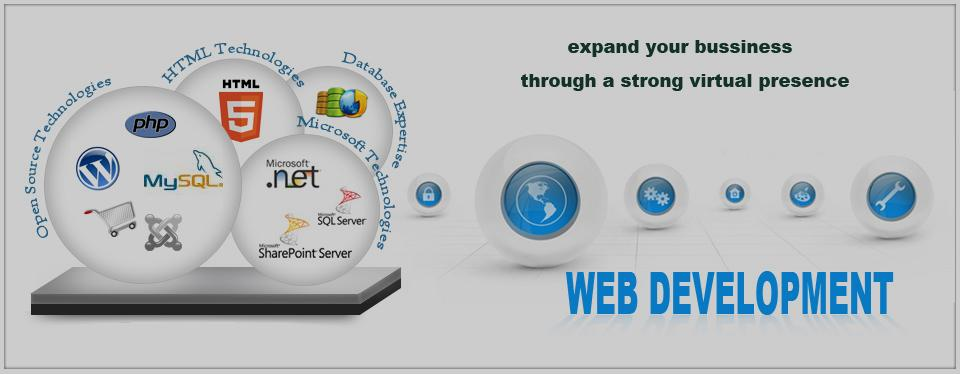 Web-Development-Company-in-Panchkula