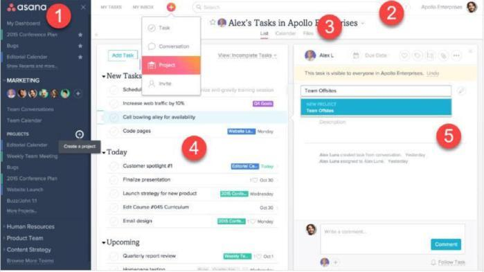 Asana's user interface