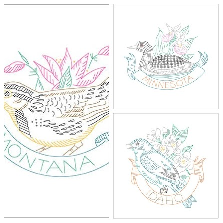 montana bird-COLLAGE.jpg