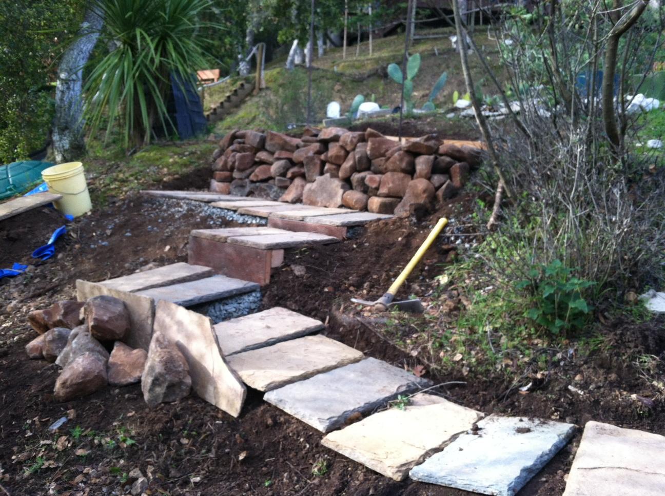 Backyard Landscaping Ideas in Arizona