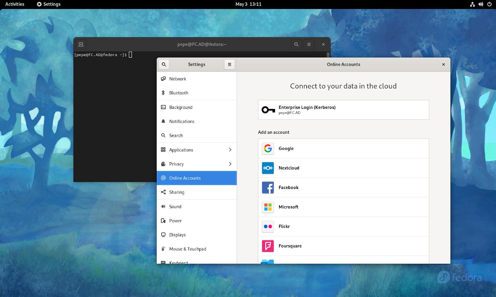 GNOME's Online Accounts screen showing a configured Enterprise Login account.