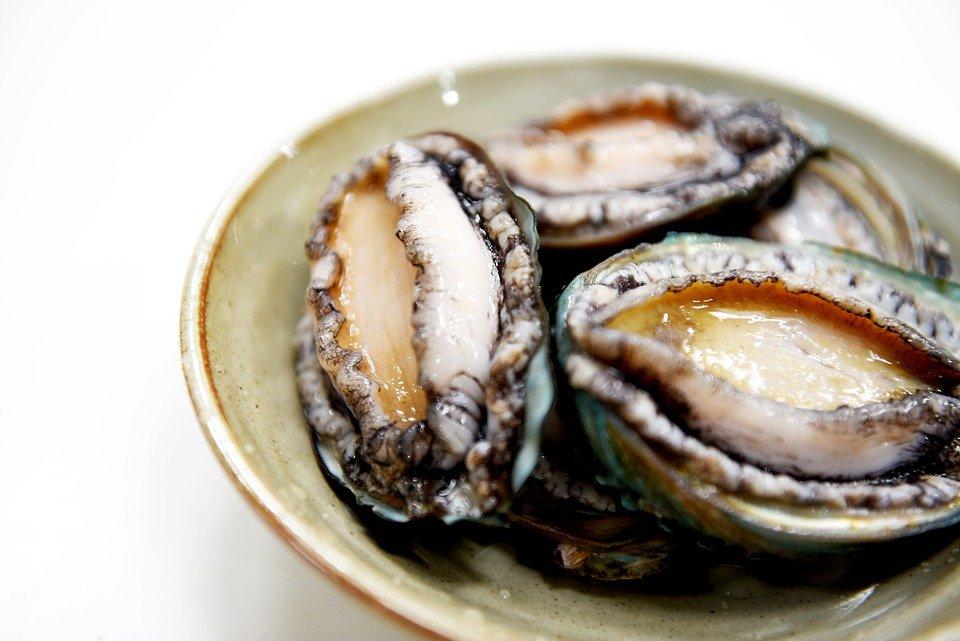Abalone, Wando Abalone, Korean Food, Wando