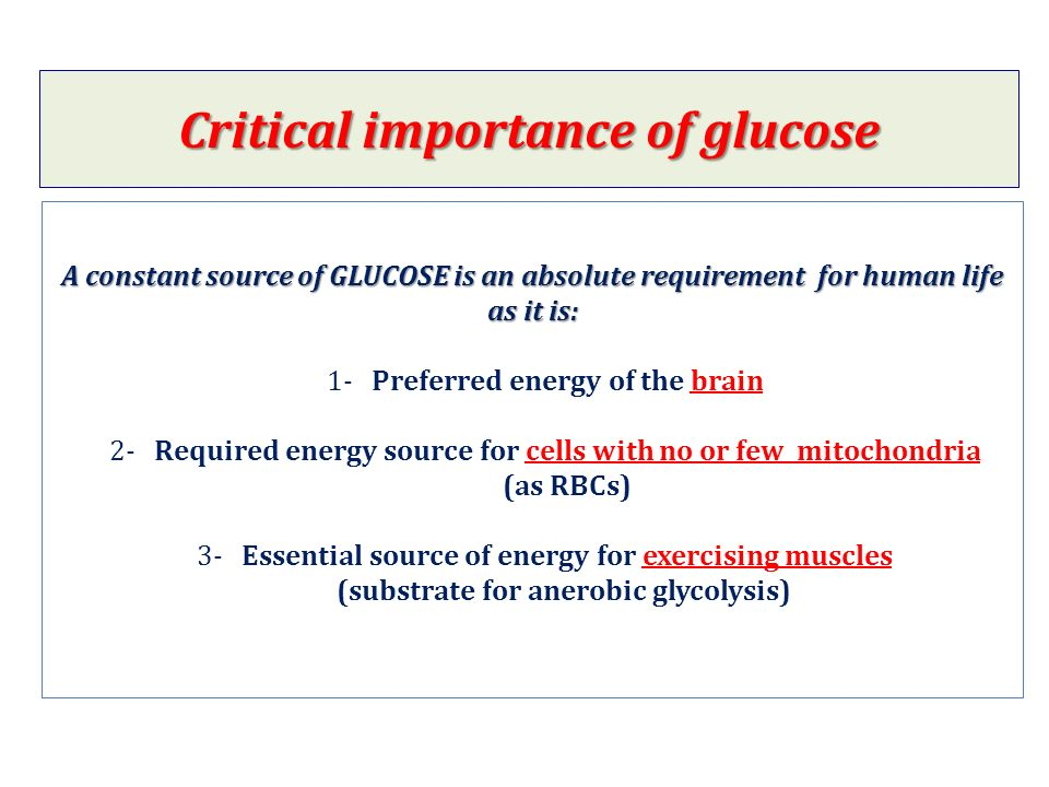 importance of glucose and blood sugar