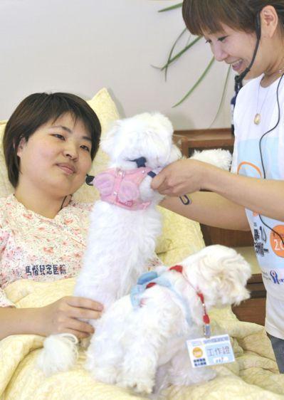 寵物的陪伴,療癒安寧病房的患者。 本報資料照片