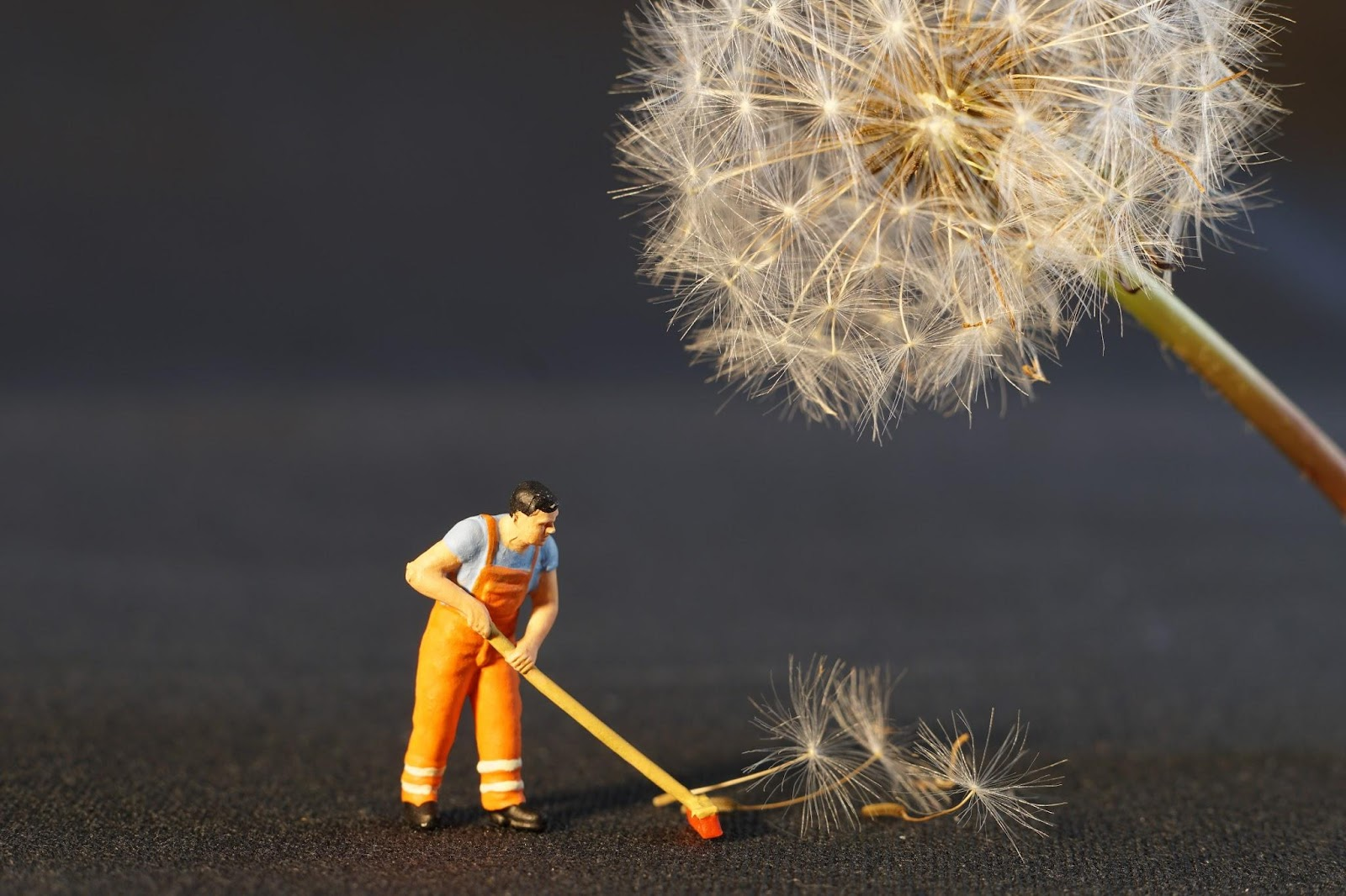 , Home Maintenance Jobs:  A Handy Checklist