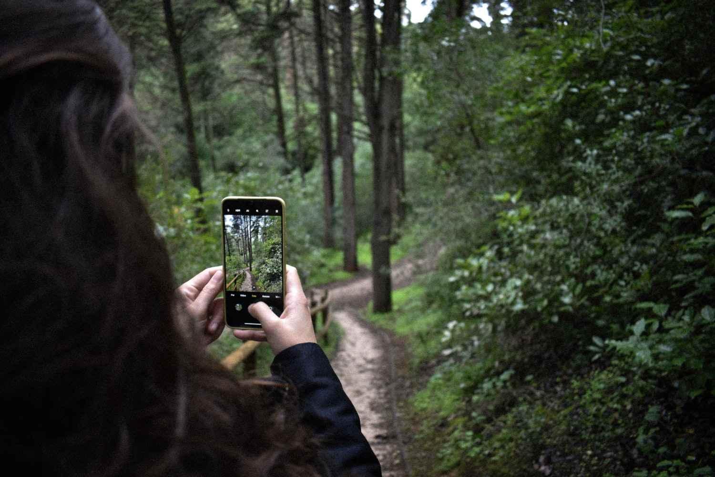 Innovazione digitale collegata all'ambiente