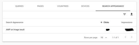 Google Search Console muestra nuevos datos de búsqueda de imágenes para páginas AMP 2