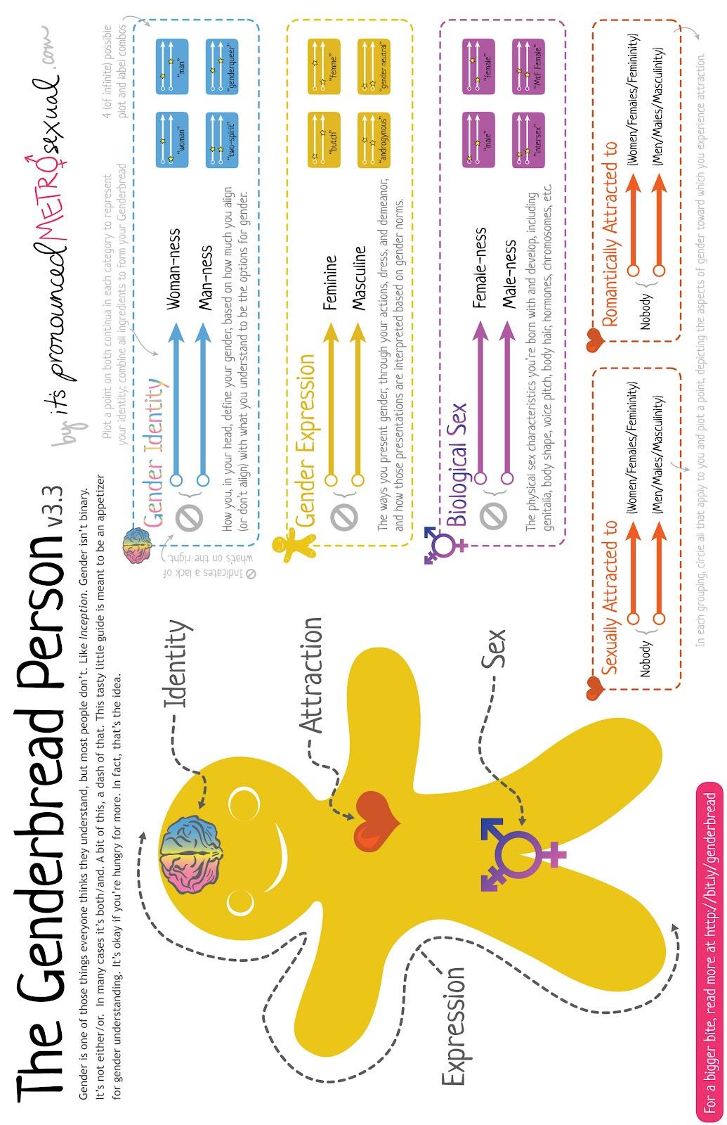 Genderbread-Person-3.3-HI-RES.jpg