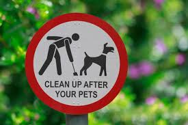Sign shows that your dog are not allowed to poop here