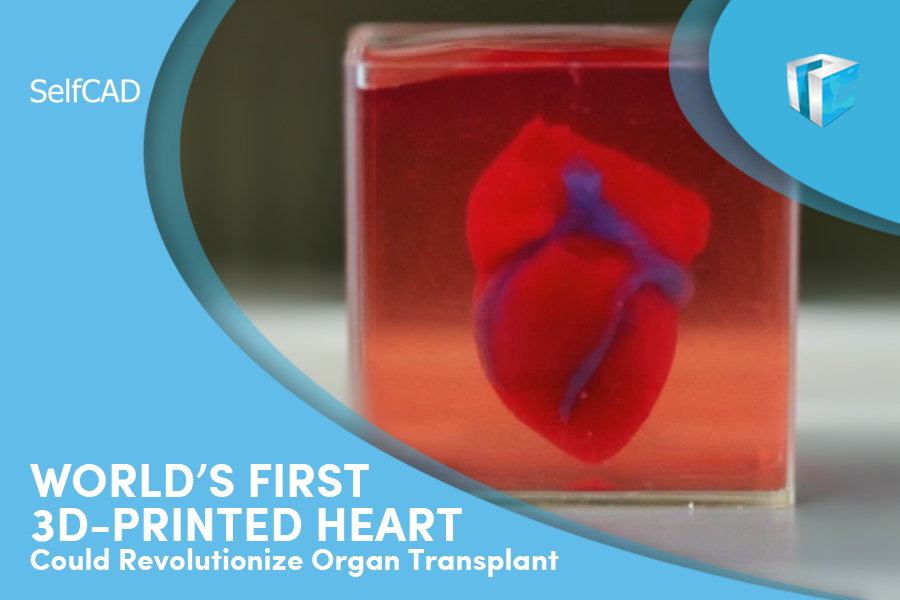 3D printed Heart