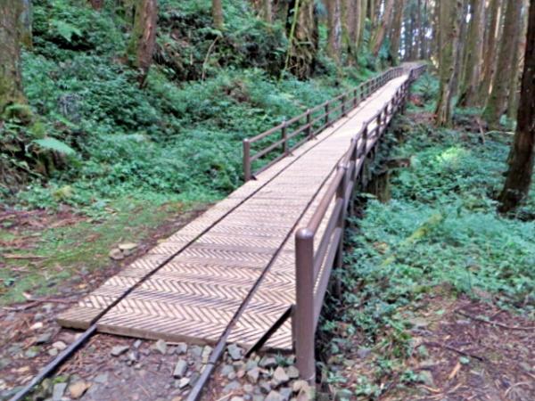 特富野古道-棧橋