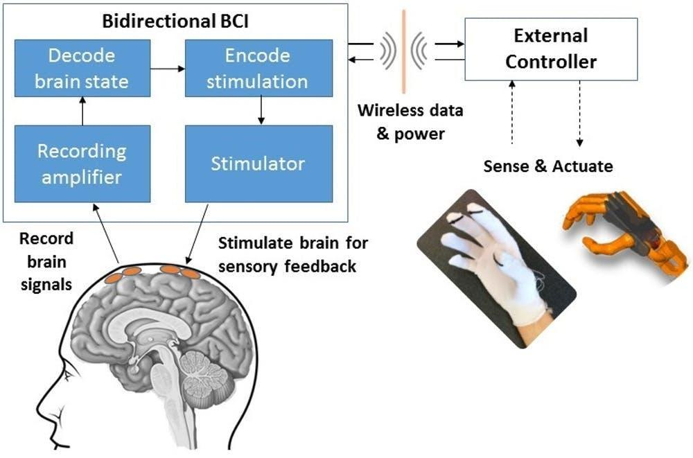 Image result for brain machine interface