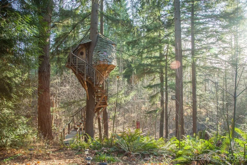 Treehouse With Spiral Staircase