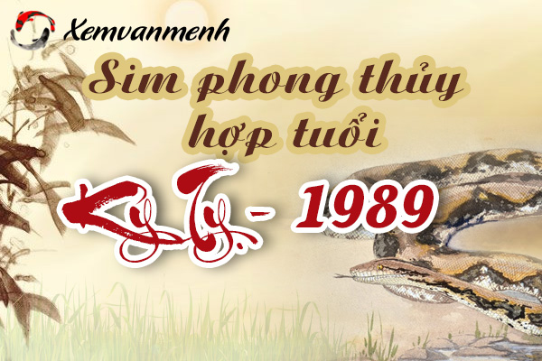 xem-sim-phong-thuy-hop-tuoi-ky-ty-1989