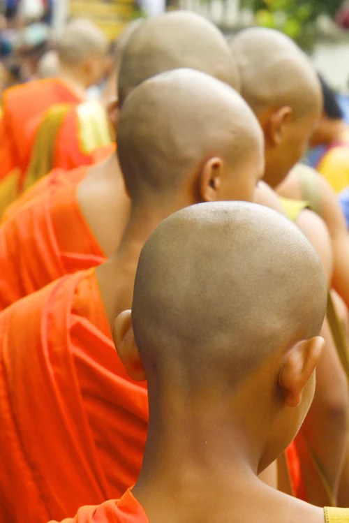 Fear of Bald People