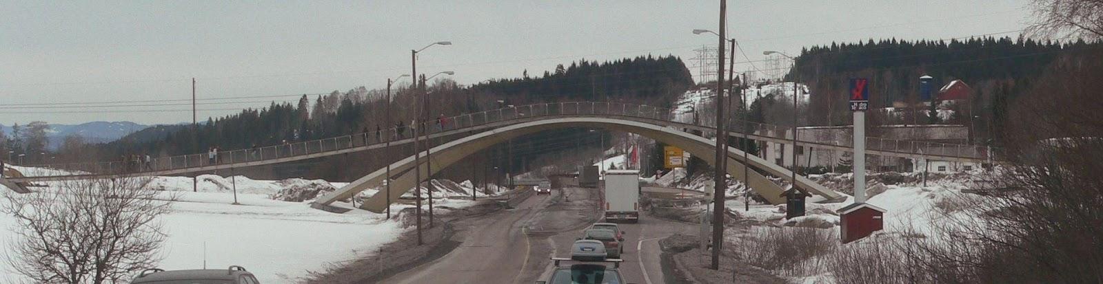 https://upload.wikimedia.org/wikipedia/commons/thumb/4/4f/Da_Vinci_Bridge_Ski.jpg/1920px-Da_Vinci_Bridge_Ski.jpg