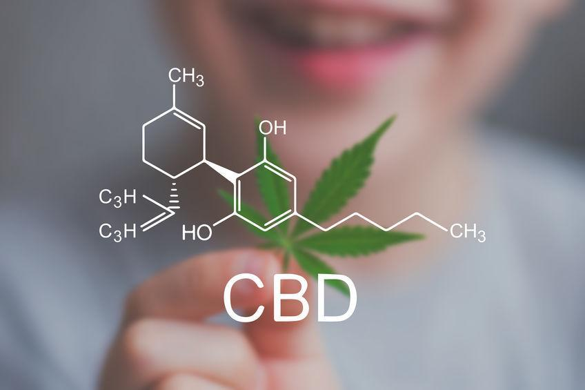 Person holding a marijuana leaf with a CBD chemical graphic on top