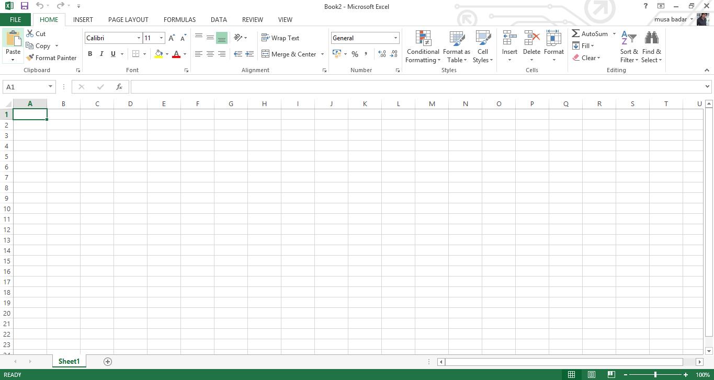 Microsoft Excel empty spreadsheet.