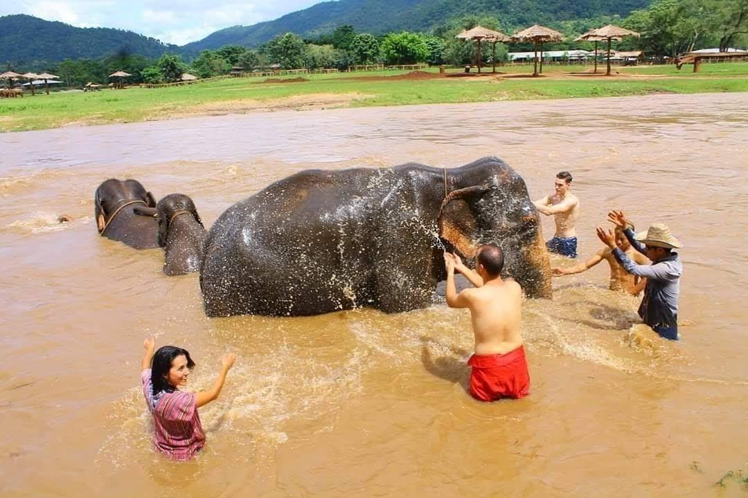 Bathing with elephant-Eco Park Safari