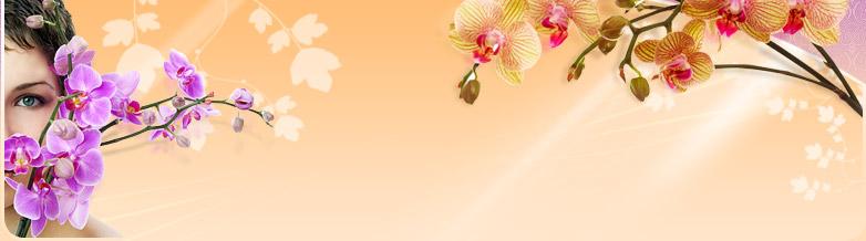 banner (1).jpg