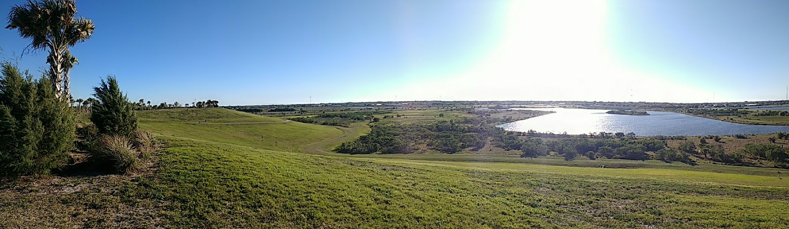 celery fields pan.jpg