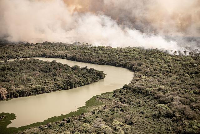 Pantanal em chamas pelas queimadas