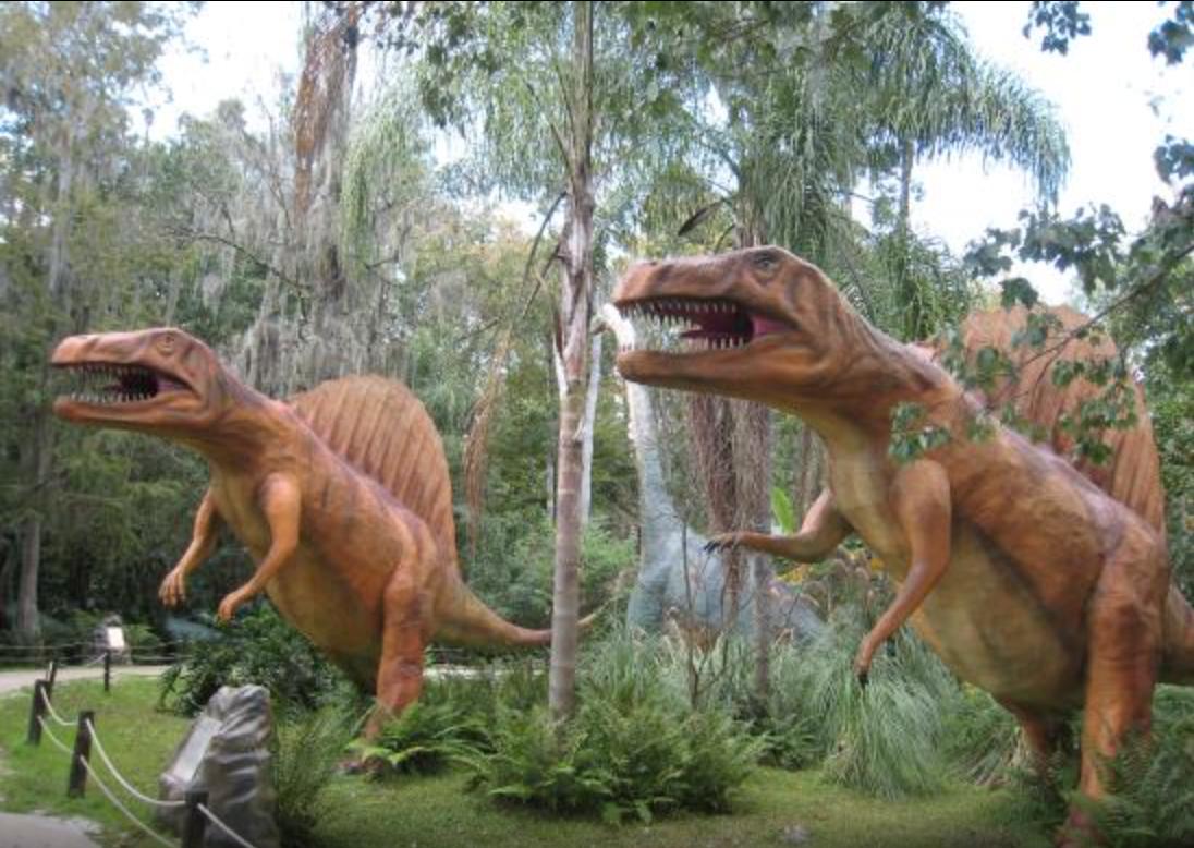 dog friendly places in florida dinosaur world