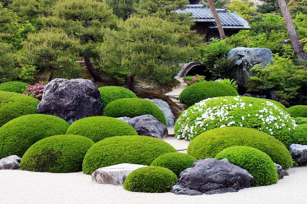 Topiary atau seni pangkas tanaman - source: thegardencentral.com