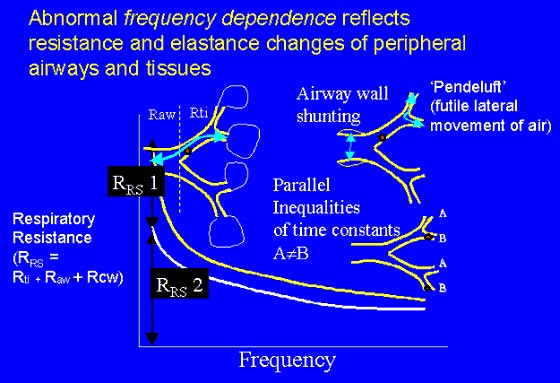 Abnormal frequency dependence is due to changes in the compliance, resistance, or inertance of the respiratory system.