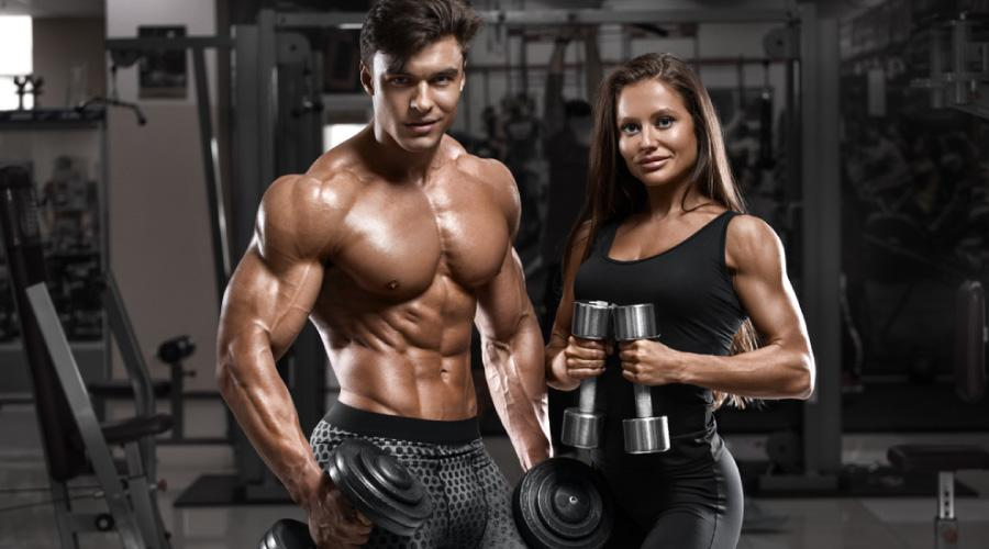 Building muscle - The fastest way to get abs
