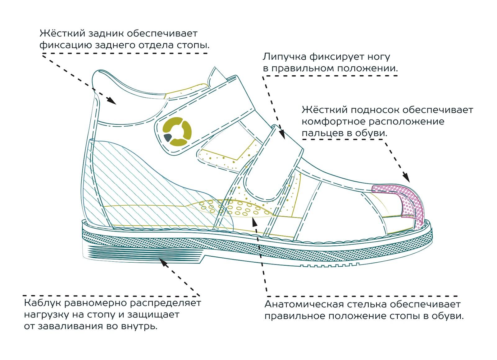 Направления_обувь_итог_0417.jpg