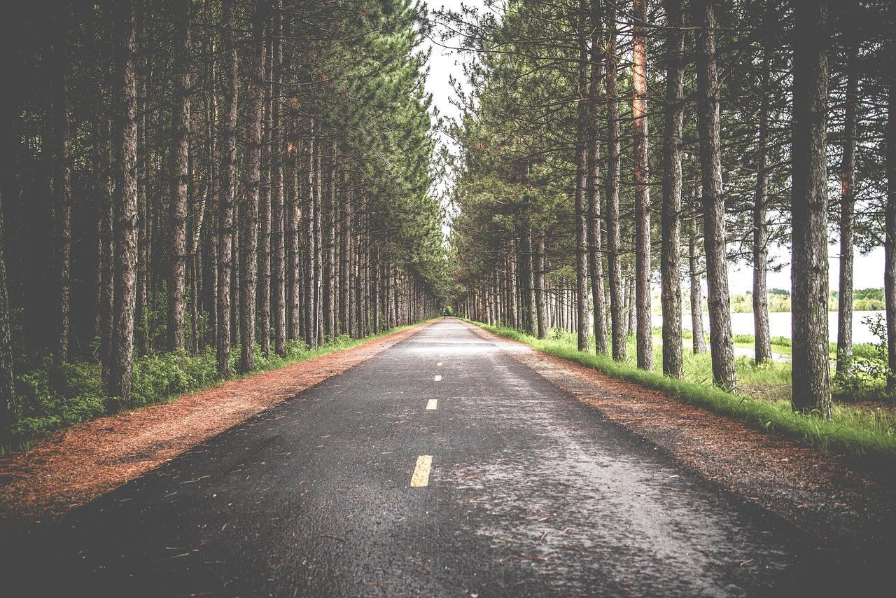 Long road for SEO