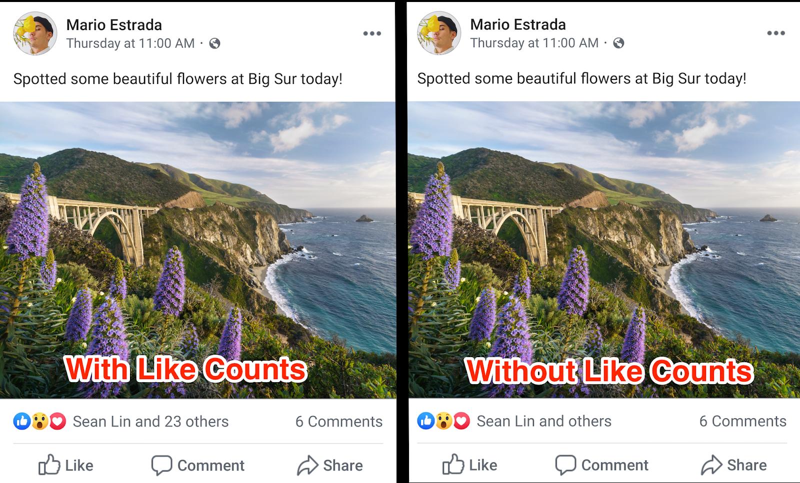 Facebook Likes nascosti