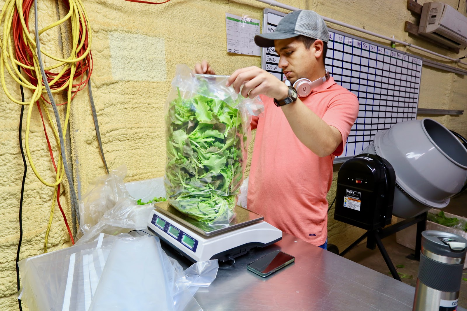 A Southern Organics staff member bags a two-pound bag of greens in the Southern Organics warehouse. (Photo by Christine Hull for Bham Now)
