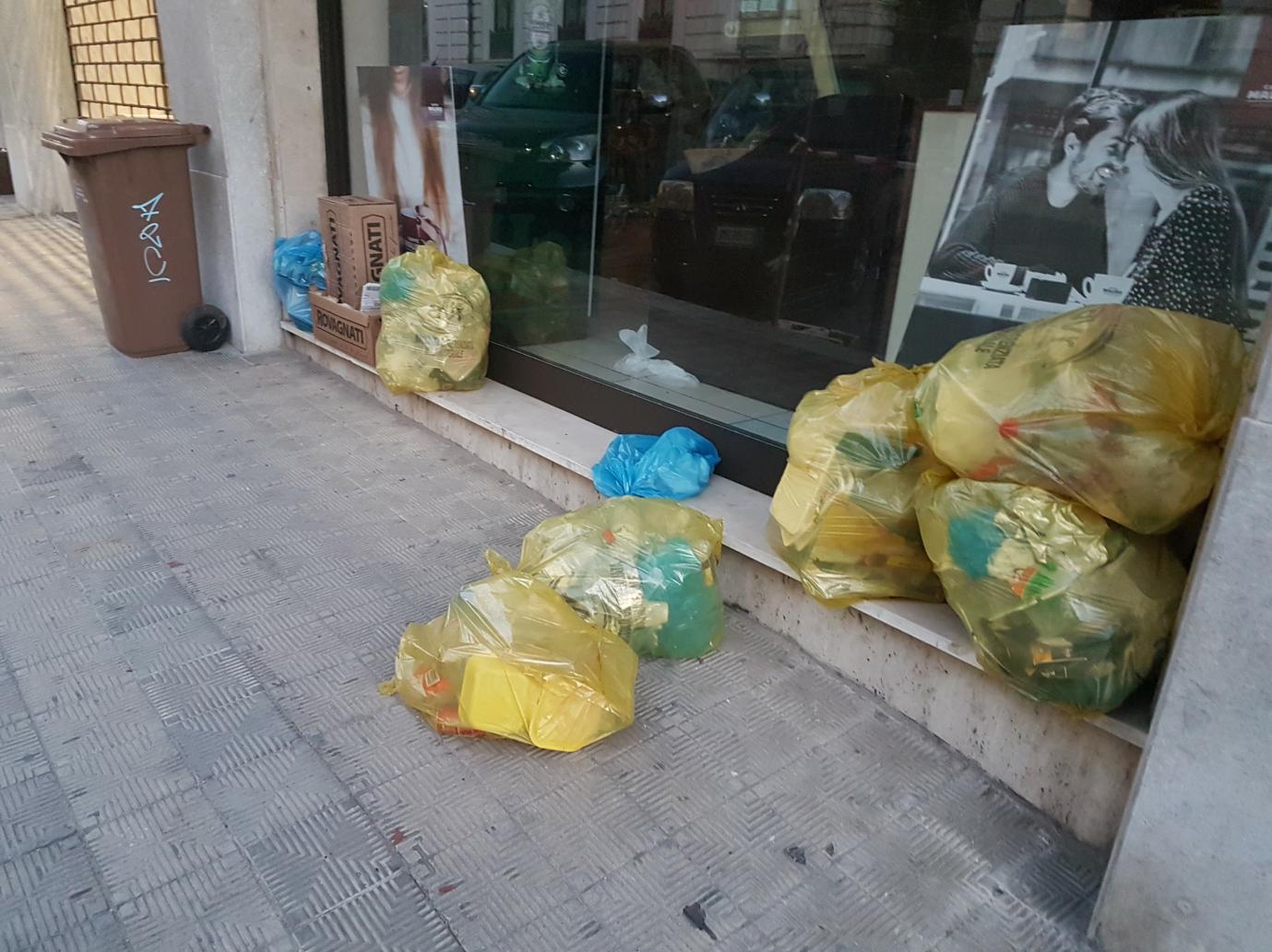 """""""Idea Progetto raccolta DifferenziAMOla 2.0"""" Proposta per migliorare la raccolta differenziata dei rifiuti nella Città di Reggio Calabria 12"""