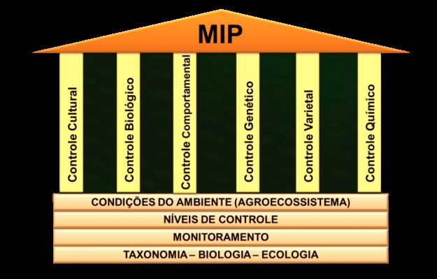 Pilares do MIP
