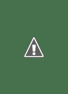 Японские воздушные шары в небе над США