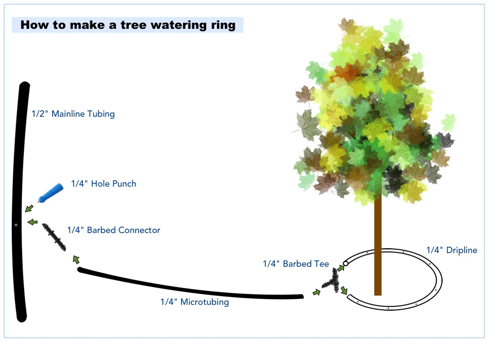 Not dripline on mature trees easier