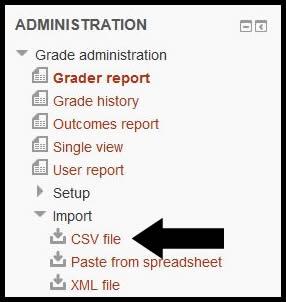CSV File import option.jpg