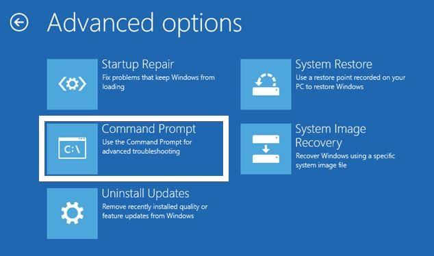 Advanced options - command prompt
