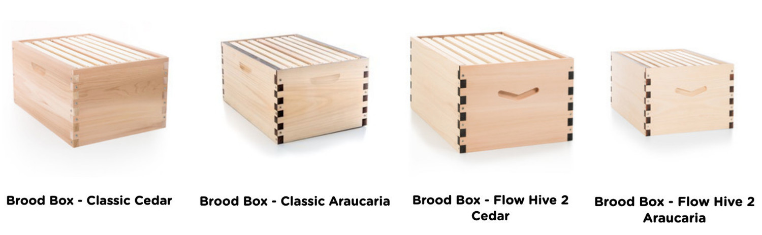 Flow Brood Boxes