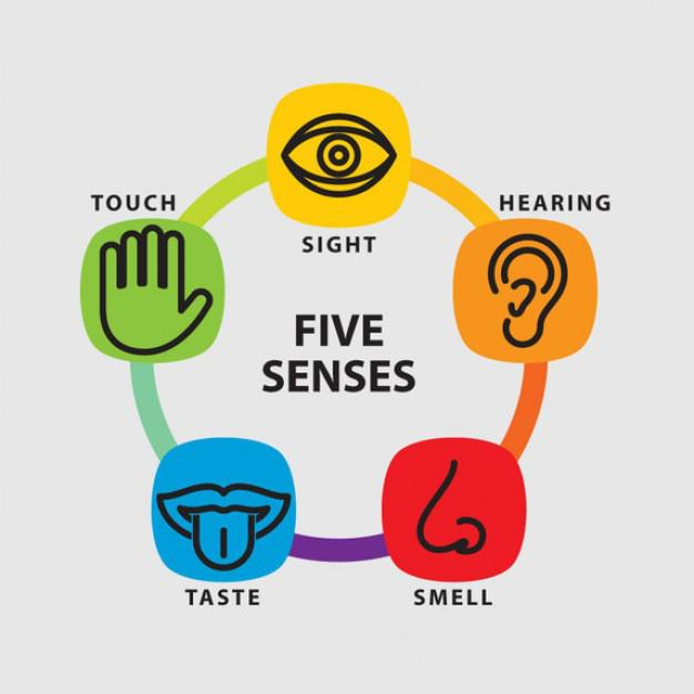 Image result for 5 senses mindfulness