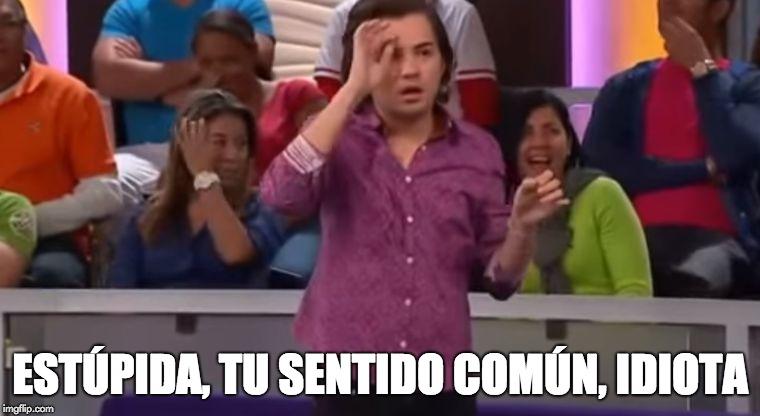 ESTÚPIDA, TU SENTIDO COMÚN, IDIOTA | image tagged in estupida,mi pelo,idiota | made w/ Imgflip meme maker